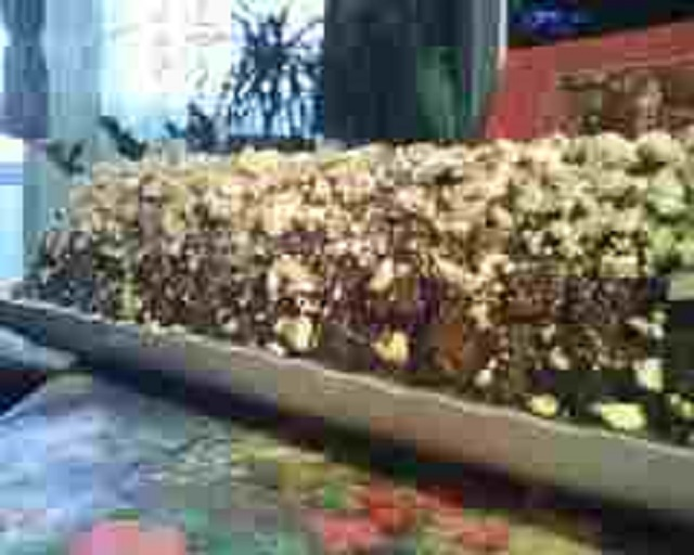 kekszes-mandulas-csokialom-katicatol1