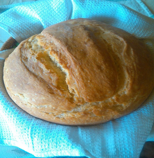 hazi-kenyer